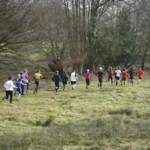 joydens-woods-race