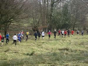 Joydens Woods 10k and 5k trail run and walk