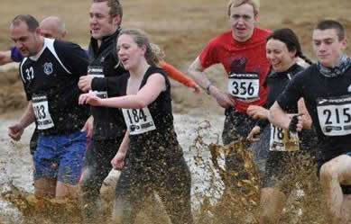 Steeplechase the Obstacle Race