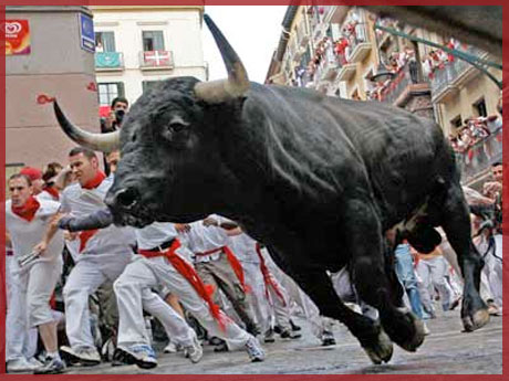 Running of the Bulls USA