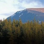aviemore-marathon-scotland-uk