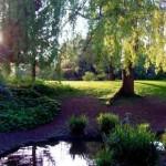 peckham-rye-park-race-london-uk
