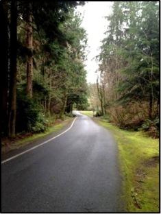 Tacoma Earth Day 5k