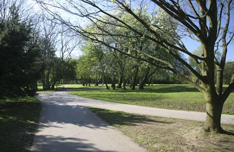 Stanley Park 4 Mile Trail Race