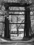 5k-trestle-run-douglass-township