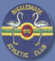 biggleswade-athletics-club-badge