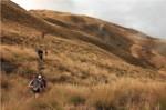 motatapu-miners-trail