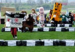 mascot-gold-cup-wetherby-racecourse