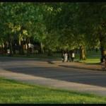 finsbury-park-10k