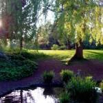 peckham-rye-park