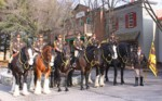 mounted-patrol