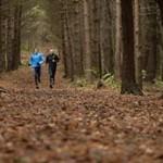 trail-rush
