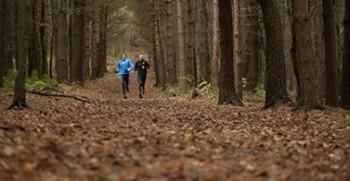 Sheffield Trail Rush