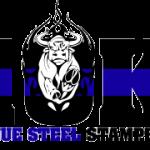 BSS10k_2color_logo