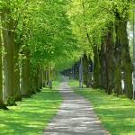 Northampton-10km