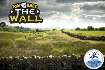Rat Race The Wall