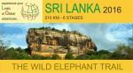 SL-logo-gig-fb