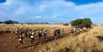 100 km of Namib Desert