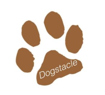 Dogstacle South