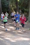Tarmac free run