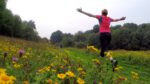 Shoreham Woods Trail