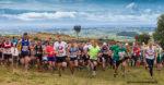 Cheddar Gorge Challenge Marathon