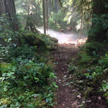 Willamette Headwaters Endurance Events (WHEE Run)