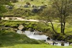 Longshaw Country Park