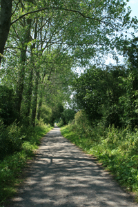 North Dorset Village Marathon and Relay