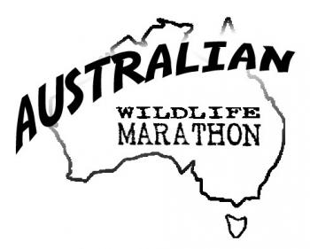 Australian Wildlife Marathon