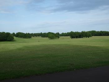 Northampton 10km