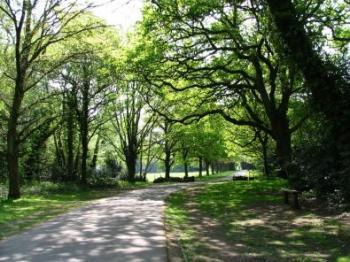 Southampton Common 10km