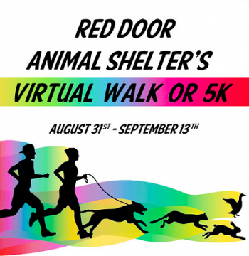 Red Door Animal Shelter's Virtual 5K