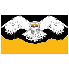 The Rad Endurance Snowy Owl 1,000