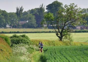 Shires and Spires Northants Ultra 35, Marathon, Half Marathon, 10K, Naseby 2021