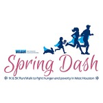 WHAM Virtual Spring Dash