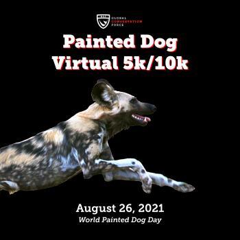 Painted Dog Virtual 5k/10k