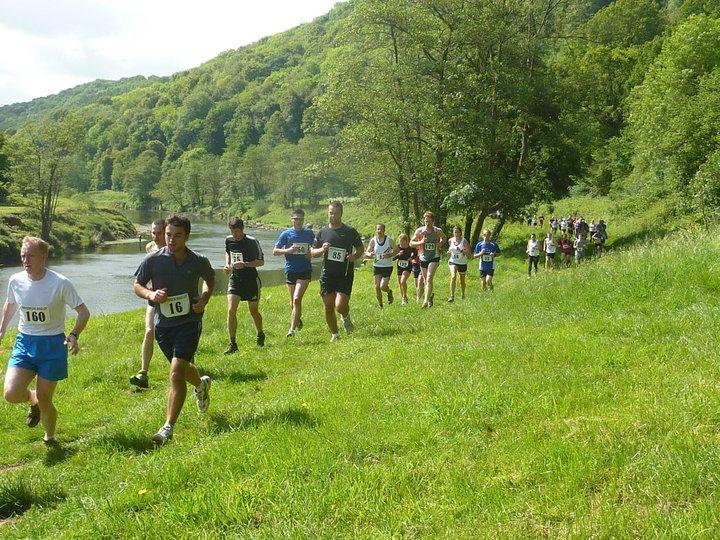 Whitebrook Wind-Up Half Marathon