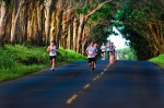 The Kauai Marathon Tree Tunnel