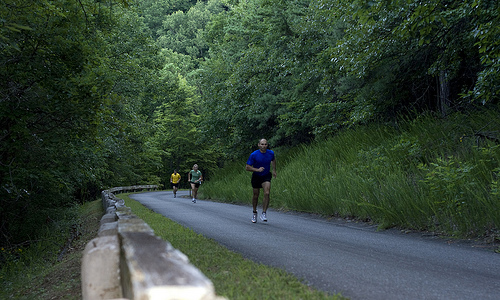 Blue Ridge Marathon - America's Toughest Road Marathon
